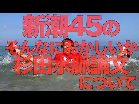 新潮45の「そんなにおかしいか杉田水脈論文」について【せやろがいおじさん】 (09月21日 02:15 / 12 users)