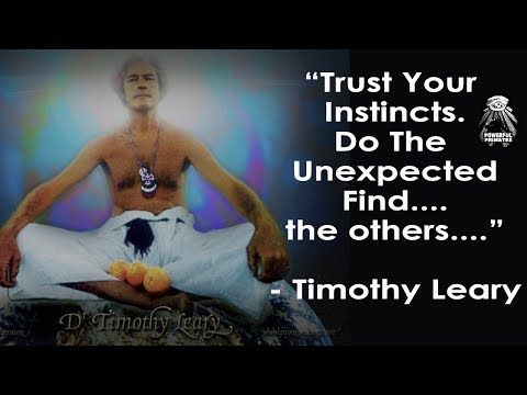 Timothy Leary: You Aren't Like Them - Find The Others (Narrated Quote, Video)
