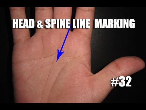 HEAD & SPINE LINE MARKING #32 PALMISTRY