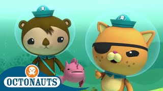 Octonauts - Solving Problems Effectively   Cartoons for Kids   Underwater Sea Education