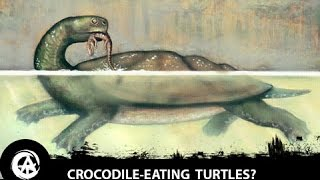 The Giant Prehistoric Killer Turtle That Hunted Crocodiles | Carbonemys