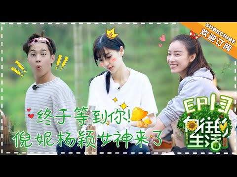 陸綜-嚮往的生活S2-EP 13- Angelababy做客劉憲華帶病上陣何炅黃磊再現《暗戀桃花源》