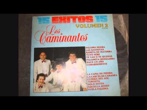 LOS CAMINANTES (EXITOS) VOL 2