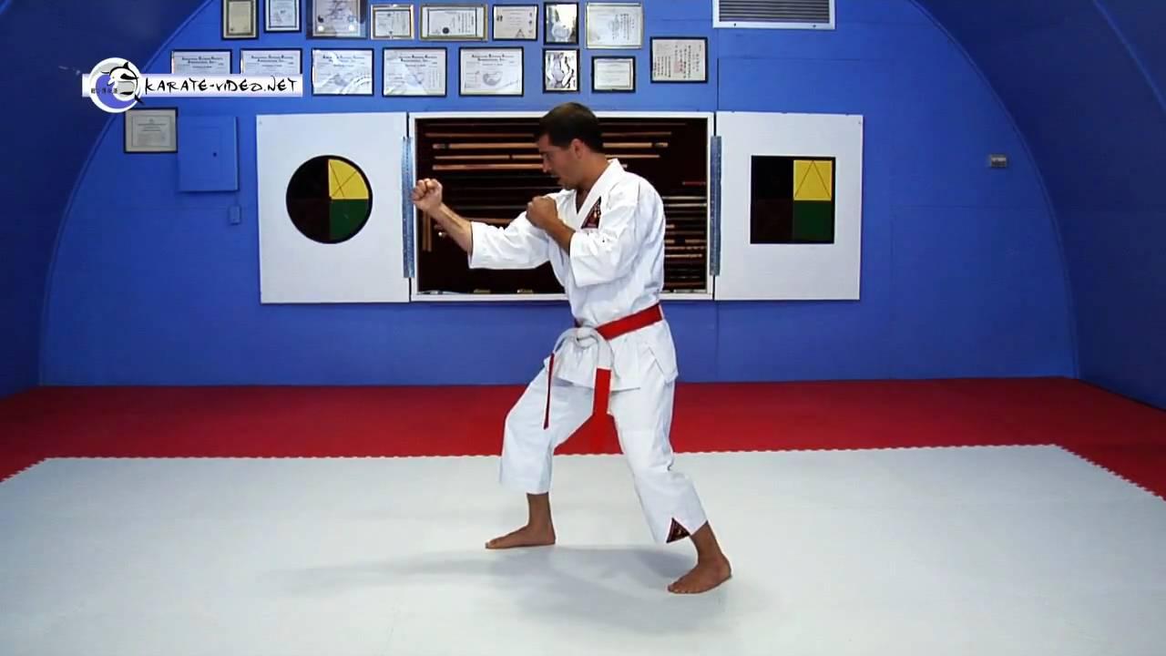 Karate back stance
