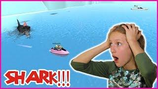 The SHARK HATES ME!