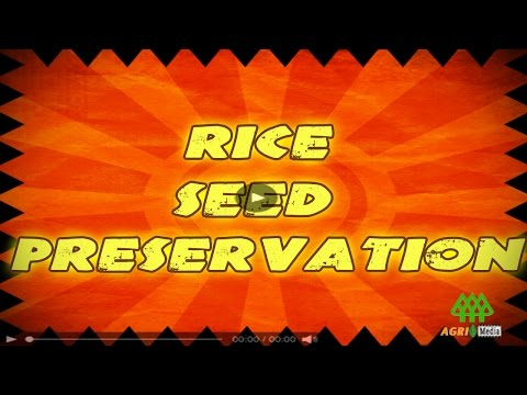 RICE SEED PRESERVATION