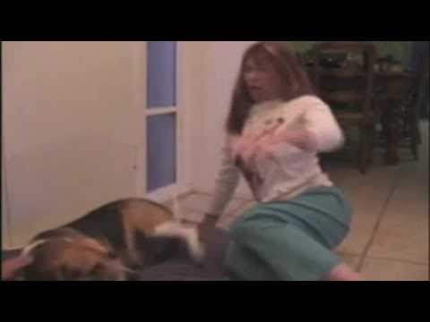 Sick Doggy Shitting Over Woman video