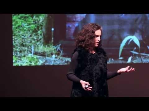 The art and science behind chimpanzee TV | Rachel Mayeri | TEDxClaremontColleges