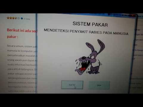 Youtube sistem informasi haji online