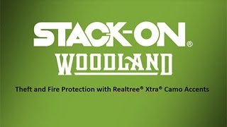 Stack-On Woodland Fire-resistant Long Gun Safe with Realtree camouflage door storage