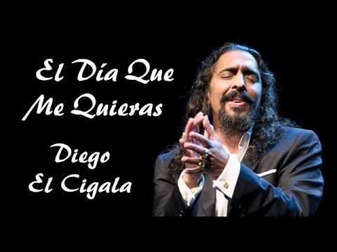 Diego el Cigala - El Día que me Quieras