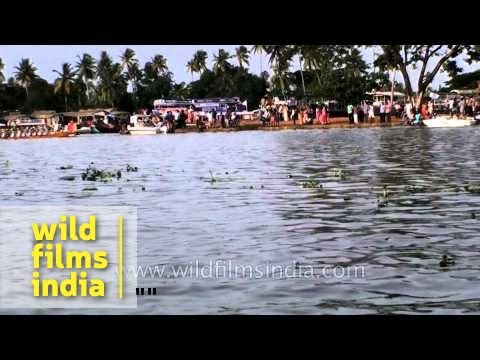 The backwaters come alive with scores of oarsmen - Nehru Trophy Boat Race