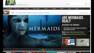 "Mermaids"" The New Evidence "" la verdad by Anonymous Paranormal"