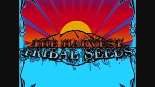 Watch Tribal Seeds Libertad feat Dready video