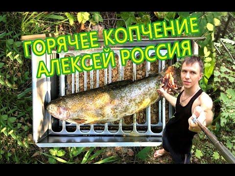 Копчение рыбы на природе  Горячее копчение быстро и вкусно  Формат Суббота