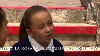Download La Rosa de Guadalupe: Niña problema 3Gp Mp4