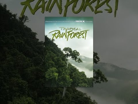 Tropical Rainforest (IMAX)