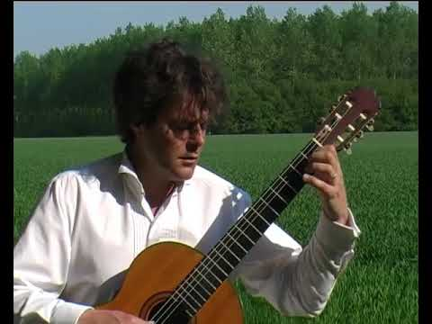 Enno Voorhorst plays Las Abejas by Barrios