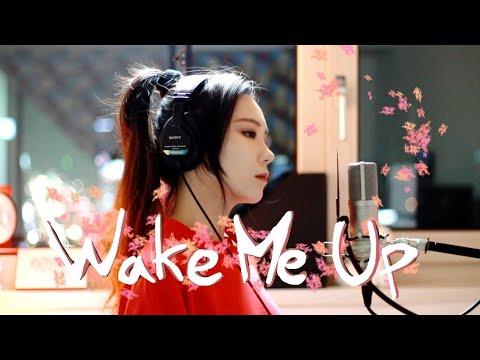 KTV版▴(女版) Avicii 艾維奇 wake me up 喚醒我 (cover by J.Fla)中文英文字幕 lyrics