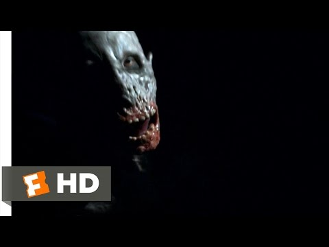 Leprechaun: Origins (2/10) Movie CLIP - Leprechaun Attack (2014) HD