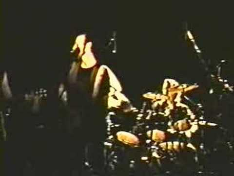 Richard Thompson - Crash the Party