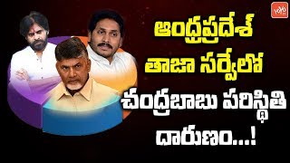 Latest Survey in AP Shocking Results to YSRCP, TDP and Janasena | AP News