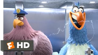 The Angry Birds Movie 2 (2019) - Bathroom Heist Scene (6/10) | Movieclips