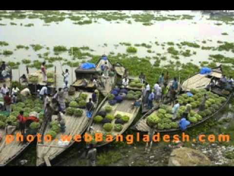 Bangla heart touching song   Koto din dekhina mayer mukh