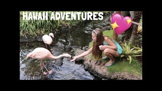download lagu Hawaii Adventures💖🌴✨ gratis