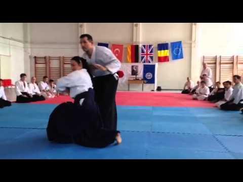 Uluslararası Aikido Semineri - Braila 2014