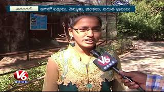 People Rush to Warangal Zoo Park in Weekends And Holidays