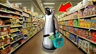 Granny Goes Shopping IN HER OWN STORE!!! (Granny Store Mod) | Granny Gameplay (Mods)