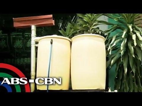 Iba't ibang rainwater harvesting system, ibinida