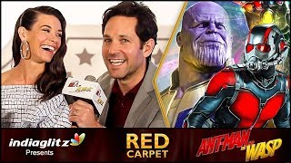 Where was ANT-MAN During Infinity War ? | Paul Rudd, Evangeline Lilly | Red Carpet