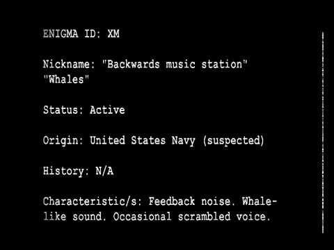 Shortwave Radio Oddity Roundup