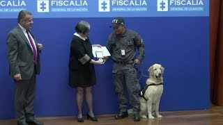 Touching retiring ceremony for police dogs