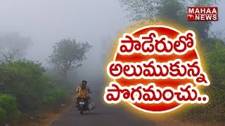 Fog Completely Covers Paderu Tribal Area Of Vizag Dist