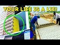 14PROOFS OUR LIFE IS A LIE