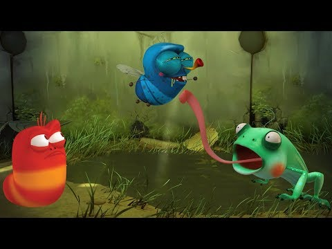 LARVA - SWAMP | Cartoon Movie | Cartoons For Children | Larva Cartoon | LARVA Official