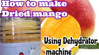 How to make Dried Mangos at home