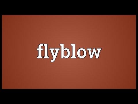Header of flyblow
