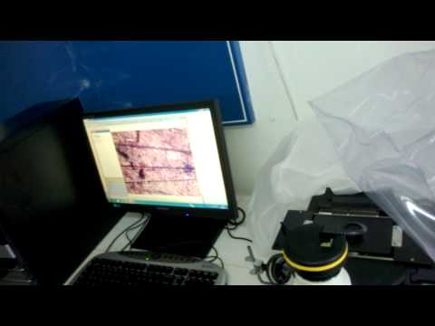 sertlik testi 20131210 (2)
