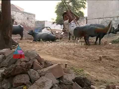 Akalangalile India - Kerala Girls Turns Haryana Bride : Akalangalile India 7th Aug 2014 video