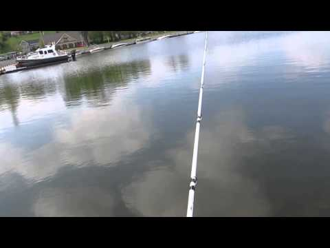 Lake Guntersville bass fishing #2