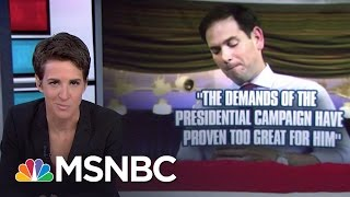 Pressure Mounts For No Show Marco Rubio To Quit