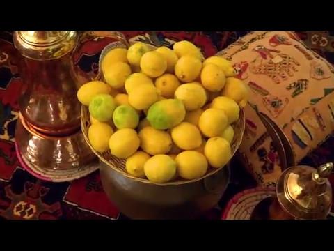 زراعة اشجار الليمون thumbnail