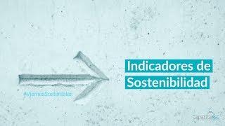 ¿Que son y cómo elegir los Indicadores de Sostenibilidad?
