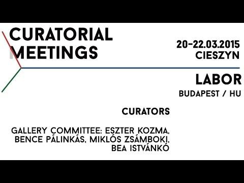 Curatorial Meetings / Labor 30 // HU
