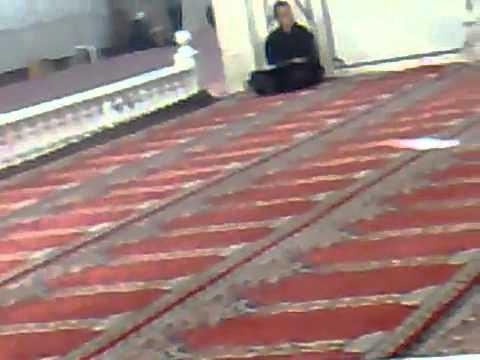 shaam 2011 talagang sangat in darbar yazeed(l.a)