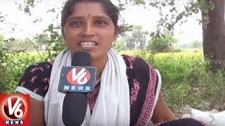Special Report On Rayapatnam Cucumber | Farmers Earns More Profit With Cucumber